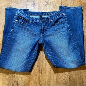 GAP Premium Curry Straight Jeans Size 6/28a